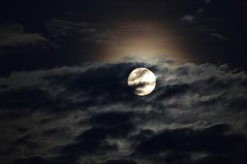 Notte da lupi...