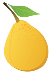 Yellow pear isolated on white