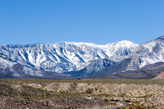 Mount Charleston in Nevada