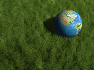 Earth globe in grass