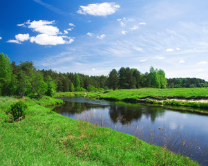beautiful summer landscape. river and meadow