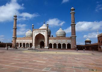 Foto op Plexiglas Delhi Moschea