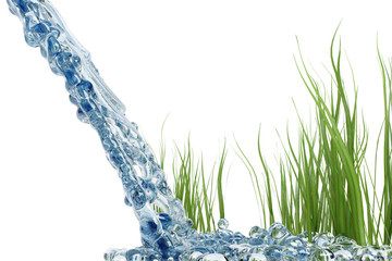 water and grass