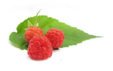 Raspberries with leaf
