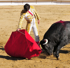 Self adhesive Wall Murals Bullfighting Matador & Bull