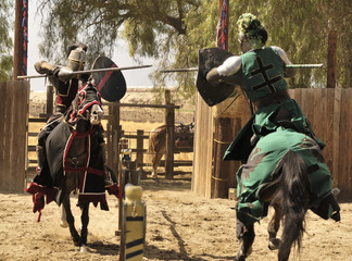 Two Knights Jousting Wall mural