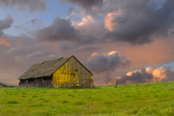 Old weathered abandoned barn in a field