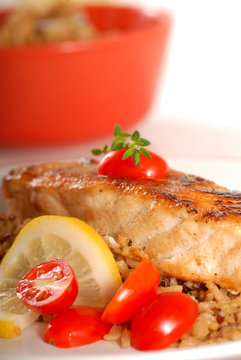 Piece of seared halibut over brown rice