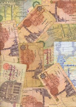 Egyptian pounds close up