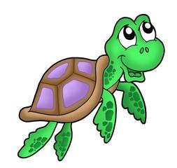 Little sea turtle purple