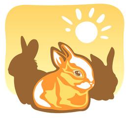 rabbit and sun