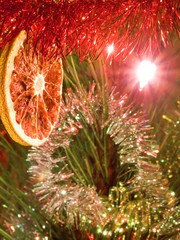 Christmas - christmas tree and orange