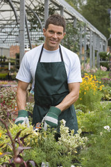 Man in apron and gardening gloves pruning flowers in garden centre, smiling, front view, portrait