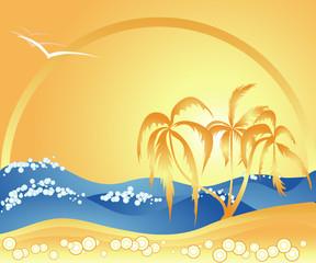 Ocean, Summer, Beach, Palm trees