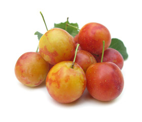 Plums red yellow with leaves
