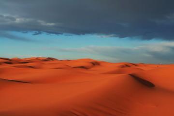 Tuinposter Algerije Desert