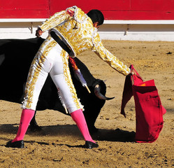 Self adhesive Wall Murals Bullfighting Matador Leading Bull