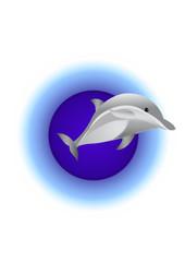delfino che salta