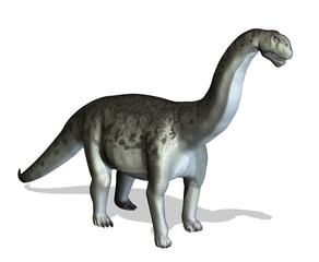 Camasaurus - 3D render