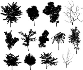 trees silhouette elements for design