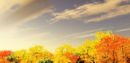 Wonderful autumn scenery