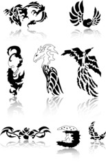 Dragon Tattoo Set