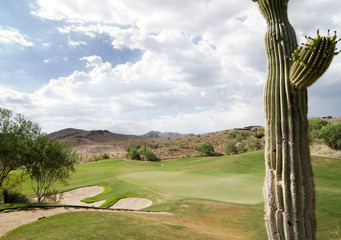 AZ golf course
