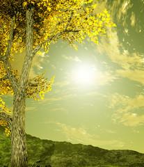 Wall Murals Yellow Autumn scenery