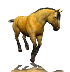 3D beautiful horse