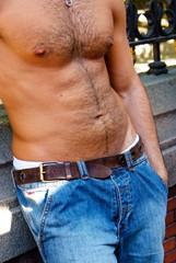 Hairy male torso