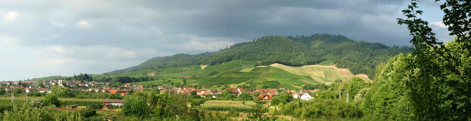 ...Schwarzwald...