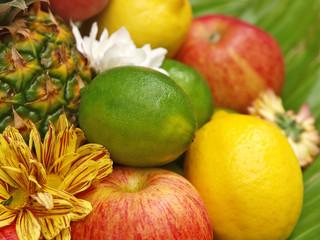 frische früchte, abwehrkräfte im winter