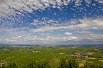 Blick auf den Oberrhein 1