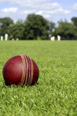 Cricket Ball & Players