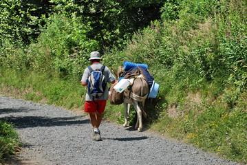 Randonner avec un âne