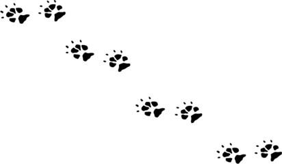 """Sehr Photos, illustrations et vidéos de """"patte de chien"""" XA05"""