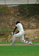 Stock Photo of a batsman