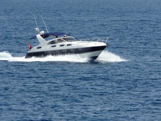 Garden Poster Water Motor sports bateau à moteur