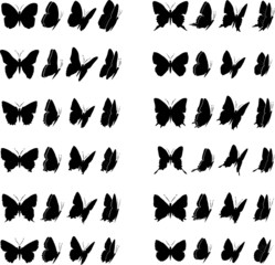 Butterfly Collection 2