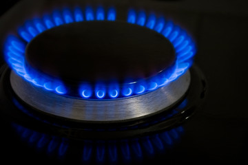 Blue Burning Flame of a Stove
