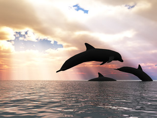 Photo sur Aluminium Dauphins Three dolphins floating at ocean (control light)