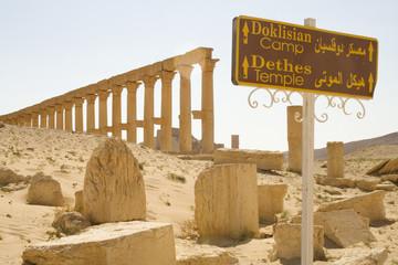 Columnas de Palmira 2