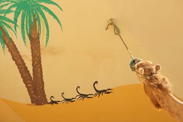 Kamel und Scorpion