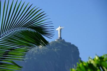 Palme et Corcovado, Jardin, Rio de janeiro, Brésil