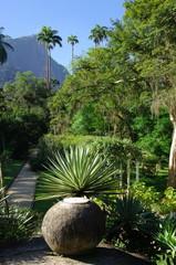 Jardin Tropical, Rio de Janeiro, Brésil