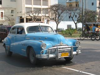 Garden Poster Cars from Cuba Voiture américaine