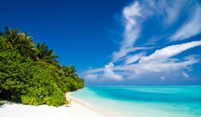 menschenleerer tropischer Strand