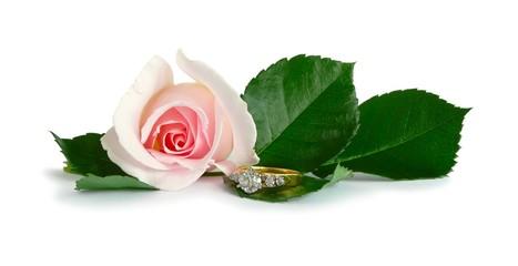 Diamond Engagement Ring & Pink Rose On White