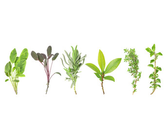 Line of Herbs