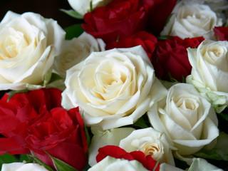 l'amour de fleur